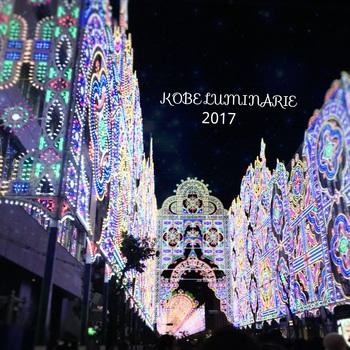 2017-12-15-11-25-45.jpg