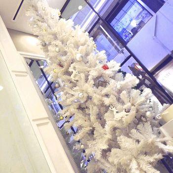 クリスマスツリー4.JPG